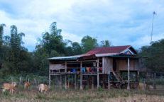 Ratanakiri Homestay