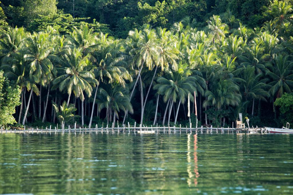 Poki Poki Togian Inseln