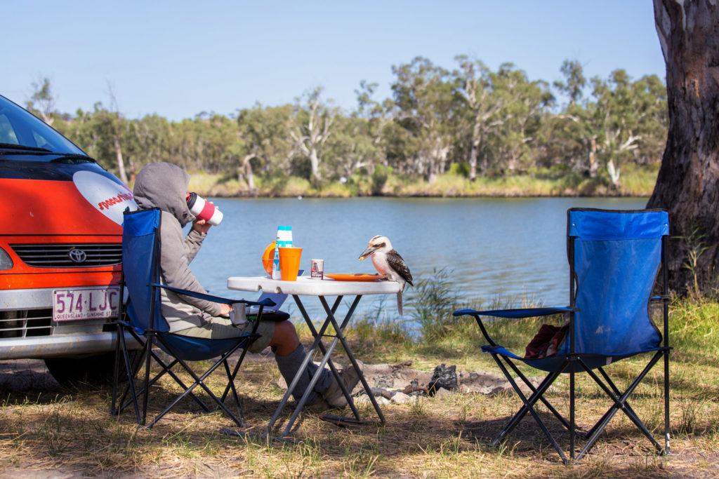 Murray River - Frühstück mit Kookaburra