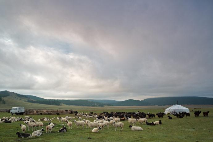 Nomaden, Mongolei