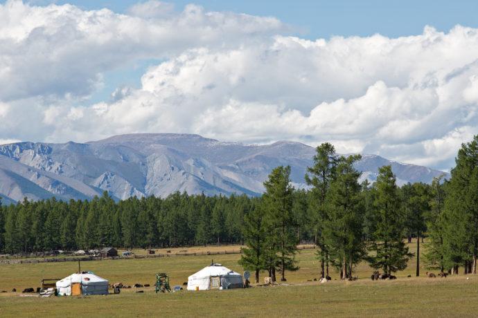 Die Umgebung von Khatgal, Mongolei