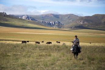 Pferdetrekking in Langmusi, Taji