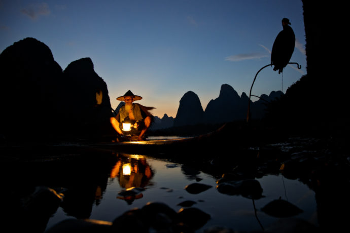 Cormorant Fisher Xingping