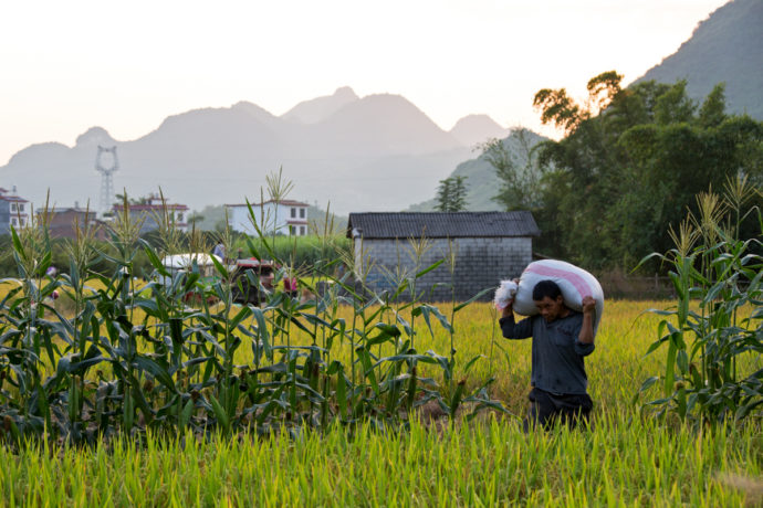 Xingping und Umgebung