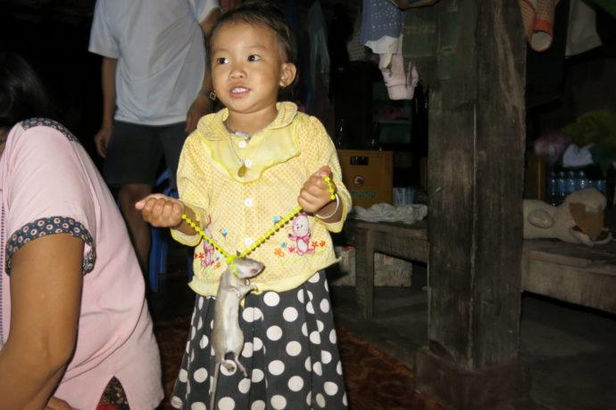 Ein neues Spielzeug,Homestay am Nam Ou