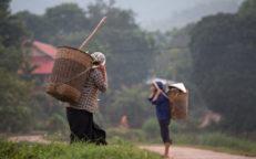 Mai Chau, Vietnam