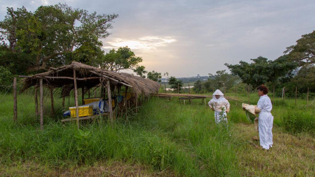 Imker für Imker in Äthiopien - Standort Bahar Dar