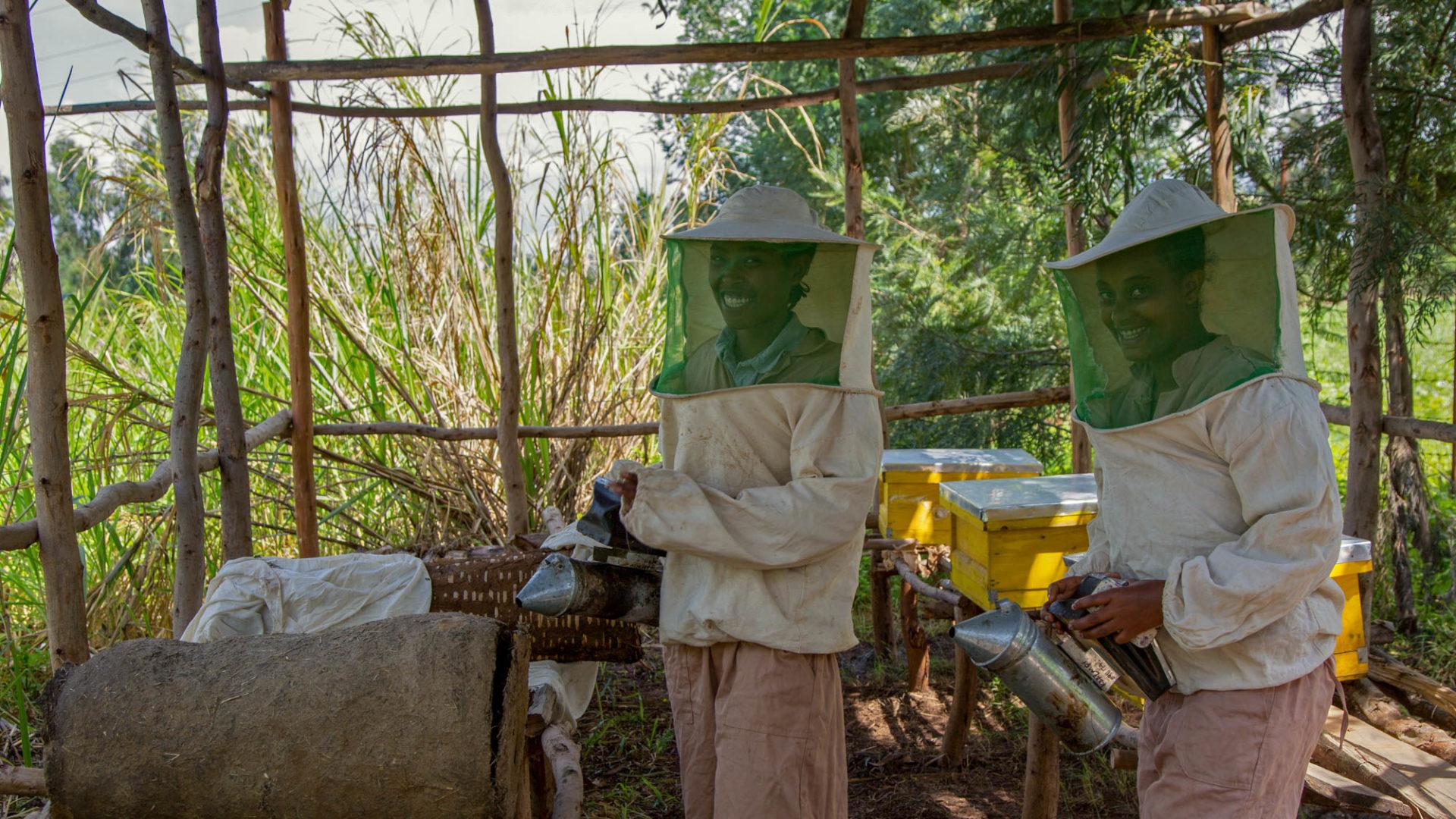 Imker für Imker in Äthiopien