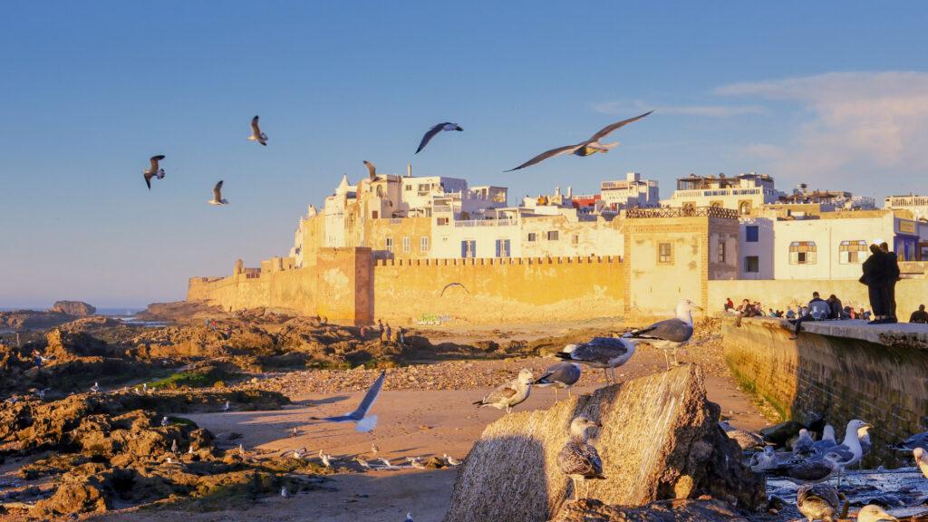 Blick auf die Medina und Stadtmauer von Essaouira, Marokko Reisetipps