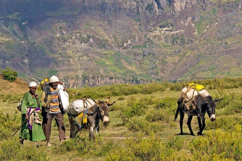 Begenungen mit Menschen und Eseln in Äthiopien - Reisebericht
