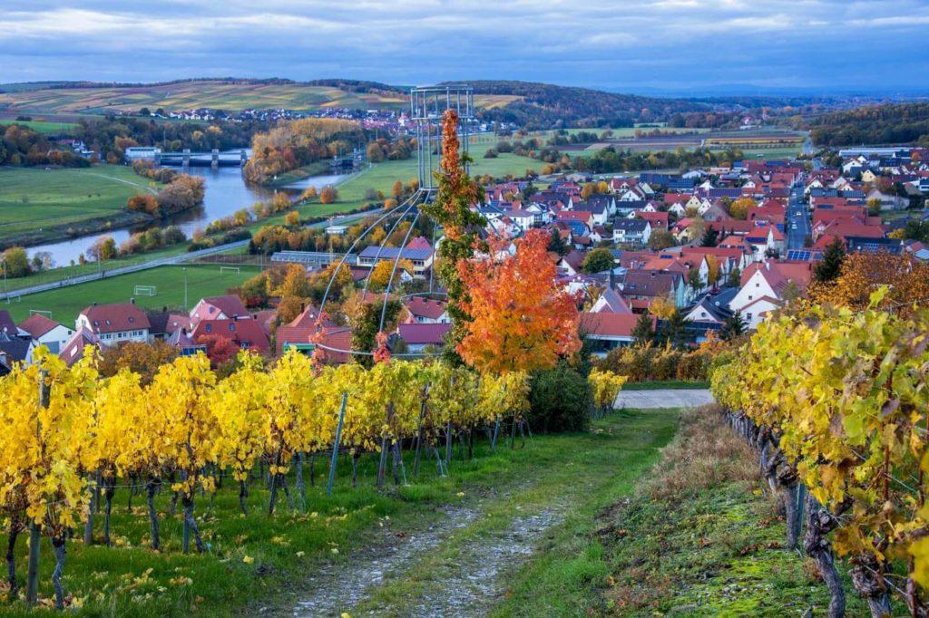 Blick auf den Main bei Stammheim in Franken - Landvergnügen Camping beim Winzer am Main
