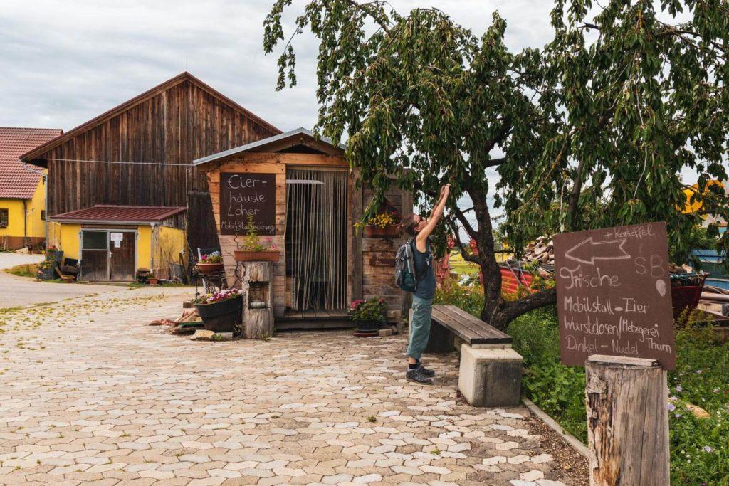 Dollinger Hof Landvergnügen in Bayern - Camping auf dem Bauernhof