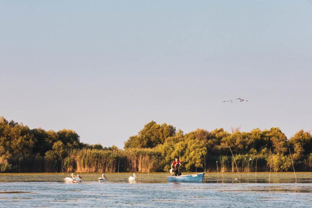 Pelikane und Fischerboot um Donaudelta - Rumänien Roadtrip mit dem Wohnmobil